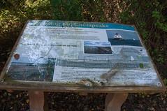 Terrapin Nature Area, Stevensville MD 29 (Larry Miller) Tags: naturepark conservation chesapeakebay maryland 2017