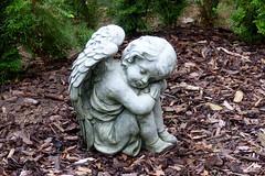 Sweet Dreams (ivlys) Tags: darmstadt waldfriedhof cemetery engel angle träume dreams ivlys