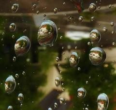 P1080046 Raindrops / Window (Traud) Tags: deutschland germany bavaria bayern window fenster rain regen drops tropfen raindrops regentropfen bus naturschutzakademie linden bokeh um180°gedreht 7dwf