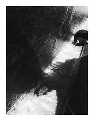 blacktaken (seba0815) Tags: ricohgrdiv ricohgriv grd grdiv monochrome streetphotography street minimal shadow shadows light sunlight contrast water reflection balloon disaster gone sopot walk poland polska fountain bw blackwhite blackandwhite black white bianco nero blanc noir czarnobiale schwarzweis seba0815 lr taken blacktaken
