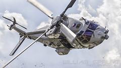 RNLAF NH90-NFH 110 (william.spruyt) Tags: nh90 chopper rnlaf rotterdam helicopter