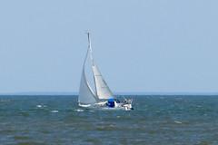 Sailing (Bucky-D) Tags: lakewinnipeg fz1000 gimli panasoniclumixdmcfz1000 beach manitoba canada ca sailboat