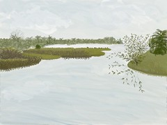 Morning at Pellicer Creek (Solly Avenue) Tags: marshes watercolor impressionism waterscape ipadpainting