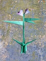 Fritillaria - Nilva Pillan (Rui.Roda) Tags: origami papiroflexia papierfalten flor fiore fleur flower nilva pillan fritillaria