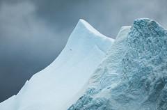 Greenland Grandeur (davebrosha) Tags: davebroshaphotography arctic boat greenland ice iceberg icebergs ilulissat landscape nature offbeat stock tour