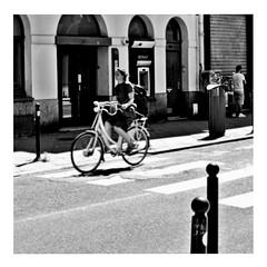 life in the fast lane (japanese forms) Tags: ©japaneseforms2017 ボケ ボケ味 モノクロ 日本フォーム 黒と白 bw bicicleta bicicletta bicycle bicycles bike blackwhite blackandwhite blancoynegro bokeh candid fahrräder fiets fietsen lifeinthefastlane monochrome radfahren random schwarzweis square squareformat strasenfotografie straatfotografie streetphotography theeagles vlaanderen zwartwit baidhsagalan