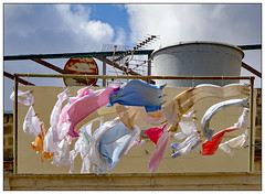 Blowing in the Wind (donbyatt) Tags: malta valletta washing rooftop wind breeze pastelcolours