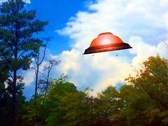 Flying Object Dropping Birds (byzantiumbooks) Tags: ufo flyingobject werehere hereios