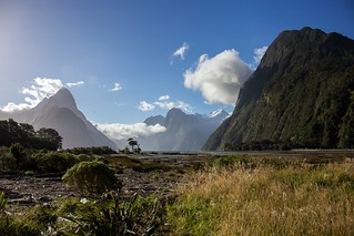New Zealand - Sunny day at Milford Sound [explored]
