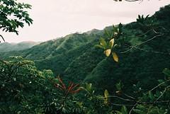 F1000014 (nautical2k) Tags: fed5b canon50mmf14ltm lomography200xpro hawaii oahu honolulu