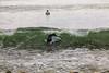 AY6A0702 (fcruse) Tags: cruse crusefoto 2017 surferslodgeopen surfsm surfing actionsport canon5dmarkiv surf wavesurfing höst toröstenstrand torö vågsurfing stockholm sweden se