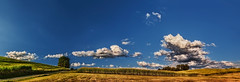 IMG_4550-56Ptzl1TBbLGER (ultravivid imaging) Tags: ultravividimaging ultra vivid imaging ultravivid colorful canon canon5dmk2 clouds sunsetclouds stormclouds scenic latesummer sky pennsylvania pa panoramic vista rural path painterly farm fields