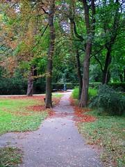 Zámecký park - alej (Michael Kůr) Tags: strážnice jihomoravskýkraj českárepublika southmoravia southmoravianregion czechrepublic zámeckýpark cheataupark park
