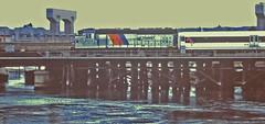 New Jersey Transit Train Crossing the Shark River in Belmar, N.J. (gg1electrice60) Tags: newjerseytransit njt diesellocomotive dieselengine electromotivedivision emd generalmotors gm gp40ph2b newjerseycoastline northjerseycoastline bayhead belmar hoboken newjersey nj oceancounty monmouthcounty hudsoncounty sharkriverbridge sharkriver statehighway35bridge sr35bridge route35bridge unitedstates usa us america route35bridgeconstruction njstatehighway35bridgereplacement njtrailroadbridge highwaybridgepiers njtgp40ph2bnumber4202 njtlocomotiveno4202 newjerseytransit4202 commuter commutertrain locomotivebuiltin1965 formernewyorkcentrallocomotive formernyclocomotive