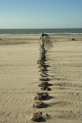 Breakwater (Schagie) Tags: strand beach water sea dutch zeeland waves golfbrekers hout wood holland zee