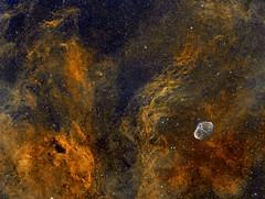 Crescent Nebula (NGC6888) and surroundings on widefield HST SII/Hα/OIII (Mosaic 2x2) (Carballada) Tags: astrophotography astronomy deep space astro celestron zwo as1600mmc skywatcher ts sky qhy qhy5iii174 narrowband astrometrydotnet:id=nova2192210 astrometrydotnet:status=solved