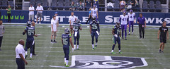 Seahawks (Nikki the birdwatcher is reorganizing photo stream) Tags: seahawks football twelve 12 game sport vikings seattle minnesota pro centurylink hawk hawks