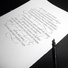 Poem: R. Vicari #Chiarariva