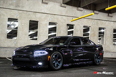 "RAYS Volk Racing Te37 - Dodge Charger Scatpack Kenny • <a style=""font-size:0.8em;"" href=""http://www.flickr.com/photos/64399356@N08/36099654913/"" target=""_blank"">View on Flickr</a>"
