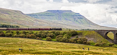 46115 (Peter Leigh50) Tags: 46115 scots guardsman settle carlisle railway ribblehead viaduct fells hills steam train engine locomotive landscape