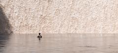 Solitude - Explore (Ron Drew) Tags: pool nikon d800 waterfall person statue solitude lasvegas nevada resort wynn urban water