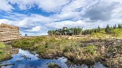 John Deere 1470E IT4 Wheeled Harvester (Tidyshow) Tags: john deere harvester tree forest wood clouds sky highland scotland moray sony a77ii work photo beautiful