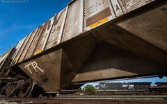Grain Loading Only (Brandon Townley) Tags: trains railroad ns norfolksouthern ashville ohio norfolk western nw