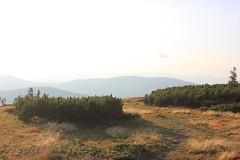 Na Pilsku (magro_kr) Tags: słowacja slowacja slovakia slovensko beskidżywiecki beskidzywiecki beskidy góry gory przyroda natura widok krajobraz sceneria mountain nature view scenery landscape