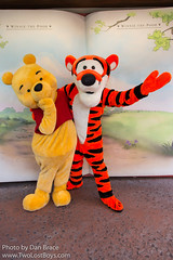 Tigger (Near the Many Adventures of Winnie the Pooh)