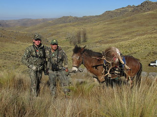 Argentina Red Stag Hunt Cordoba 31