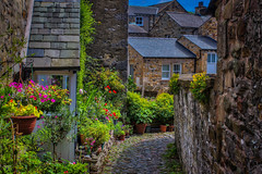 Flowers (Kev Walker ¦ 7 Million Views..Thank You) Tags: architecture building canon1855mm canon700d clouds cumbria england hdr historic kirkbylonsdale picturesque postprocessing riverlune southlakeland town westmorland