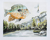 Piney Creek Sunfish, one of my Dad's favorite places in Arkansas (DrewGaines) Tags: gaines drew texas denton lure sunfish natural arkansas fishing fish nature outdoors painting art watercolor