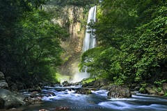 Prehistoric Jungle (brusca) Tags: mysumatra exploreasia beautifulworld flickr explore filter nisi river green sumatra jungle landscape
