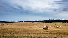 Easton Hay Bales (AppleTV.1488) Tags: 5why berkshire cycleride dorset europe gbr sport uk unitedkingdom cycling easton westberkshire england eastonhill gb appletv1488 2017 august 14082017 14aug2017 14 appleiphone6s iphone6sbackcamera415mmf22 29mmfocallength35mm pm noflash landscapeapectratio f22 ¹⁄₄₃₀₀secatf22