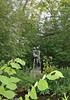 Minnehaha Park - Hiawatha Statue (dlberek) Tags: hiawatha henrywadsworthlongfellow minnehahapark minnesota minneapolis