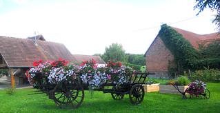 l'Alsace vous souhaite un bon dimanche à vous tous !