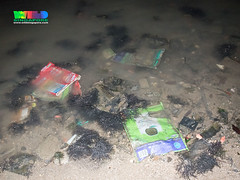 Trash on Changi (wildsingapore) Tags: changi carpark1 threats litter singapore marine coastal intertidal shore seashore marinelife nature wildlife underwater wildsingapore