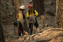 "29284939032_b53f1daab1_o (Forest Service Photography) Tags: usdepartmentofagriculture unitedstatesdepartmentofagriculture usda""departmentofagriculture"" forest nationalforest fire wildfire wildland forestfire cedar usforestservice fs forestservice unitedstatesforestservice kernville lakeisabella kernriver tularecounty kerncounty bakersfield posey panoramaheights sugarloaf california ca ponderosa treemorality pinesequoiaredwood adaptivemanagementservicesenterpriseteam amset firebehaviorassessmentteam fbat"