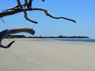 Coonarr Beach [Elliott Heads]