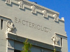 Bioscience at Berkeley...the old kind. (Melinda Stuart) Tags: libslibs bacteriology egyptian architecture griffon ucb berkeley campus academic sciences bioscience