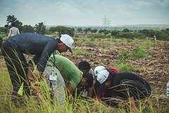 Service Project - Tree Plantation