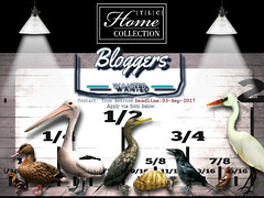 CLOSED - │T│L│C│ Blogger Search - Autumn/Winter (- TRUE & LAUTLOS CREATIONS -) Tags: tlc home collection blogger search second life ssl secondlife mesh animated animals │t│l│c│
