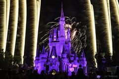 Hearts Afire (RT Images) Tags: disney disneyworld fireworks wishes