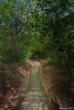 Karambagala Hermitage - කරඹගල (කරඬුලෙන) ආරණ්ය සේනාසනය (Shalaka Gamage) Tags: karambagala hermitage කරඹගල කරඬුලෙන ආරණ්ය සේනාසනය shalakagamage sancharakaya beautyofsrilanka srilanka ambalangoda hambanthota rideeyama aranya buddhist yoga bhawana meditation rocktemple highesttemple panaroma forest httpwwwflickrivercom flikre peace gopro fisheye madunagala maththala mattala vilage copyright