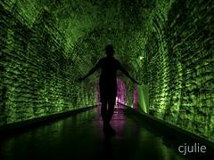 l'univert enfoui (cjuliecmoi) Tags: brockville brockvillerailwaytunnel ontario sitehistorique vacances voyage train architecture tunnel silhouette personne