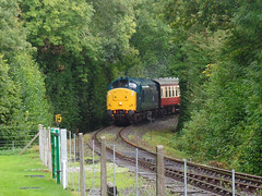 37142 Boscarne Junction (1) (Marky7890) Tags: 37142 class37 boscarnejunction bodminwenford railway cornwall heritage diesel locomotive