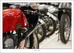 The Motorcycle Masterpiece (G. Postlethwaite esq.) Tags: cotton dof motorcyclemasterpiece nationalmotorcyclemuseum thedailypost beyondbokeh bokeh depthoffield motorcyle photoborder red selectivefocus motorbikesmotorcyclesopentoall