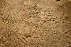 Relief from the palace of Assurnasirpal II at Nimrud, Iraq, ca. 875-860 BCE, National Museum, Copenhagen (5) (Prof. Mortel) Tags: denmark copenhagen assurnasirpal nimrud iraq assyria assyrian
