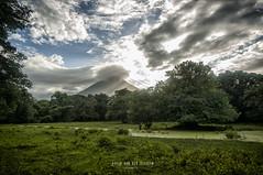 Nicaragua - Isla Ometepe:  around accommodation (Exper!ence it) Tags: nicaragua isla ometepe around accommodation nature volcano beauty nikond300 1635mm 80400mm