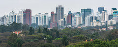Higienópolis (ruimc77) Tags: nikon d810 tamron sp 70200mm f28 di vc usd sao são paulo brasil brazil skyline skyscraper skyscrapers cidade city ciudad megalopolis latinoamerica latinoamérica south america américa latina sudamérica sudamerica sul sur
